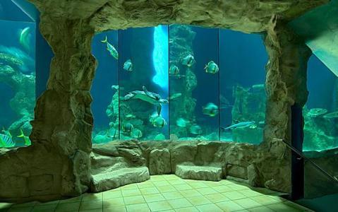 haus-des-meeres-wien-wien-tierparks-zoos1